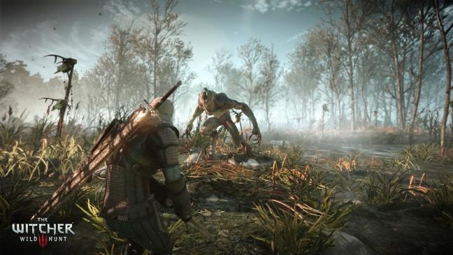 The-Witcher-3-Wild-Hunt2
